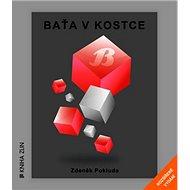 Baťa v kostce: Rozšířené vydání - Kniha