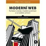 Moderní web: Perfektní stránky v každém prohlížeči a na každém zařízení - Kniha