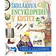 Školákova encyklopedie v kostce - Kniha