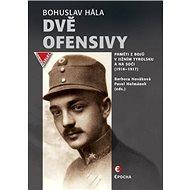 Dvě ofensivy: Paměti z bojů v jižním Tyrolsku a na Soči (1916 – 1917) - Kniha