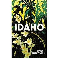 Idaho - Kniha
