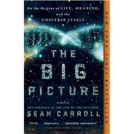 The Big Picture: On the Origins of Life, Meaning, and the Universe Itself - Kniha
