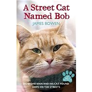 A Street Cat Named Bob - Kniha