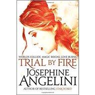 Trial by Fire: The Worldwalker Trilogy 1 - Kniha