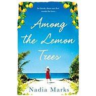 Among the Lemon Trees - Kniha