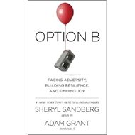 Option B - Kniha