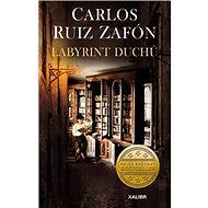 Labyrint duchů - Kniha
