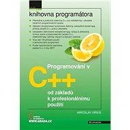 Programování v C++: od základů k profesionálnímu použití - Kniha