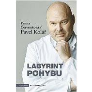 Labyrint pohybu - Kniha