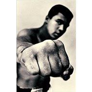 Ali: A Life - Kniha