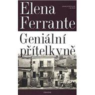 Geniální přítelkyně 1 - Kniha
