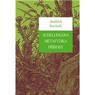 Schellingova metafyzika přírody - Kniha
