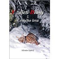 V zajetí Diany z Českého lesa - Kniha