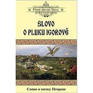 Slovo o pluku Igorově - Kniha