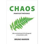 Chaos: praktický průvodce - Kniha