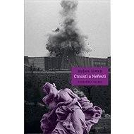 Ctnosti a Neřesti: Sochařská elegie - Kniha