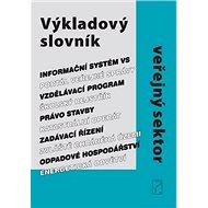 Výkladový slovník Veřejný sektor - Kniha