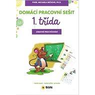 Domácí pracovní sešit 1. třída: Zábavné procvičování - Kniha