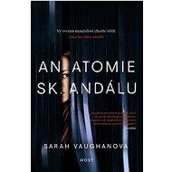 Anatomie skandálu - Kniha