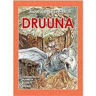 Druuna 3: Mistrovská díla evropského komiksu 17 - Kniha