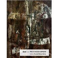 Procházka Brnem - Kniha