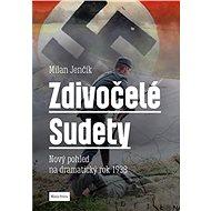 Zdivočelé Sudety: Nový pohled na dramatický rok 1938 - Kniha