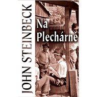 Na Plechárně - Kniha