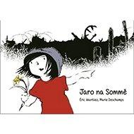 Jaro na Sommě - Kniha