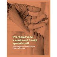 Prarodičovství v současné české společnosti - Kniha