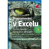 Programování v Excelu 2013 a 2016: Záznam, úprava a programování maker - Kniha