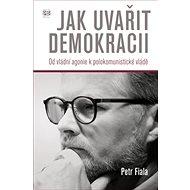 Jak uvařit demokracii: Od vládní agonie k polokomunistické vládě