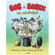 Bob a Bobek na návštěvě: Poznej s nimi různá povolání - Kniha