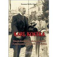 Karl Kostka a a Německá demokratická svobodomyslná strana v Československu: v době před 2. světovou  - Kniha