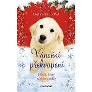 Vánoční překvapení: Příběh, který zahřeje u srdce - Kniha