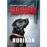 Hrdina Hurikán - Kniha