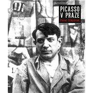 Picasso v Praze - Kniha
