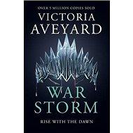 War Storm - Kniha