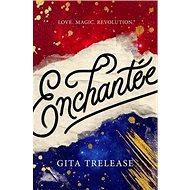 Enchantée - Kniha