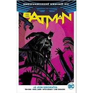 Znovuzrození hrdinů DC: Batman 2: Já jsem sebevražda