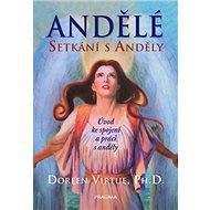 Andělé Setkání s anděly: Úvod ke spojení a práci s anděly - Kniha