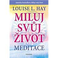 Miluj svůj život Meditace