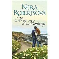 Mág z Monterey - Kniha