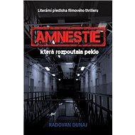 Amnestie: která rozpoutala peklo - Kniha