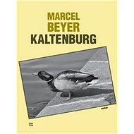 Kaltenburg: Skutečný příběh dobrých vojáků 91. regimentu - Kniha