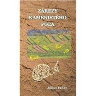 Zárezy kamenistého poľa - Kniha