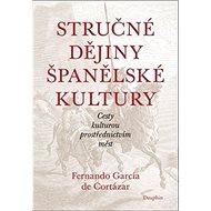 Stručné dějiny španělské kultury - Kniha