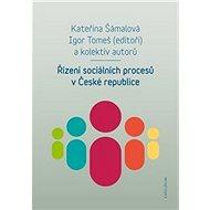 Řízení sociálních procesů v České republice - Kniha