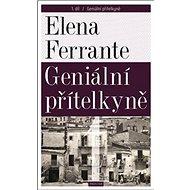Geniální přítelkyně 1: Díl první - Kniha