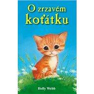 O zrzavém koťátku - Kniha