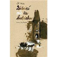 Zádušní mše za hraběnku - Kniha
